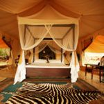 5 reasons a luxury safari honeymoon is just better