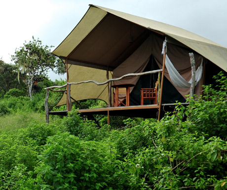 Galapagos Safari Camp, Santa Cruz Island