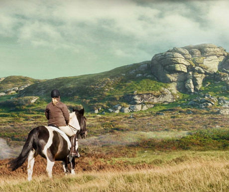 Riding adventure on Dartmoor
