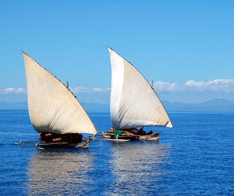 Dhow boats, Vamizi