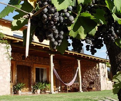 Finca Adalgisa, Charcas de Coria, Mendoza