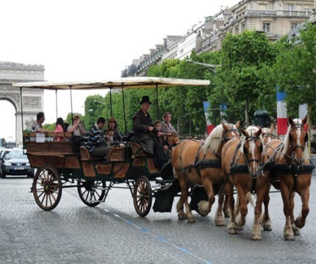 Paris by horse-drawn carriage