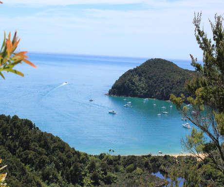 The Abel Tasman coast track