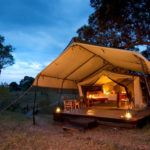 The top 5 luxury safari camps that won't break the bank