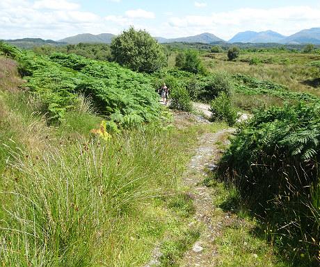 Isle of Eriska walks