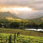 Top 5 wine farm stays in South Africa