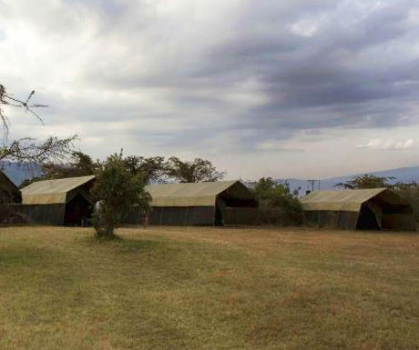 Pakulala Ngorongoro