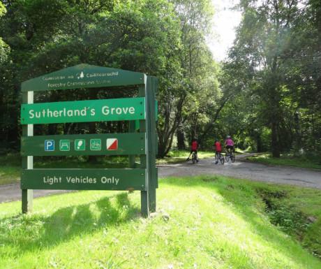 Sutherland's Grove