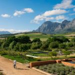 Top 5 South African Winelands boutique hotels