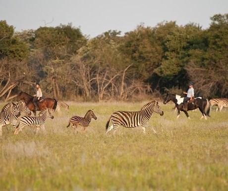 African Explorer Safari - Horizon Horseback (3)