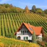 5 luxury winery getaways