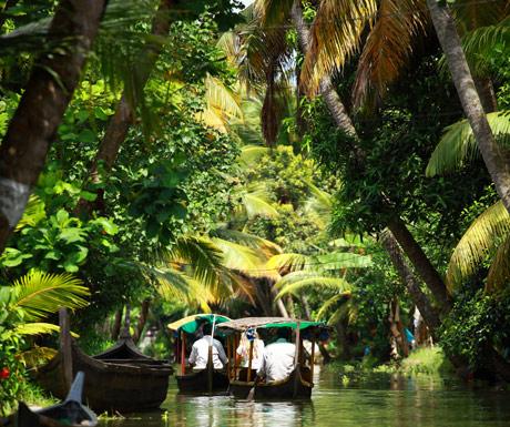 Backwaters, Kochi, Kerala