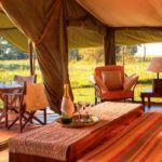 Kenya's top luxury safari and beach combinations