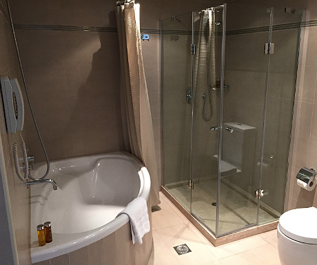 Sani bathroom
