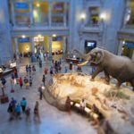 The best free attractions in the US