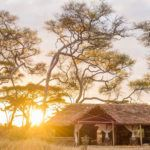 Top 10 new luxury safari camps and lodges