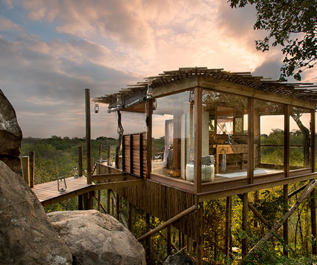 Lion Sands Treehouses