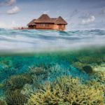 Photograph of the week: Bandos Island in the Maldives