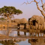 Why is Botswana a holiday hotspot for 2015?