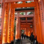 5 must-sees when in Kyoto