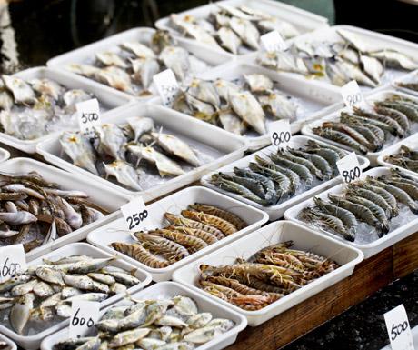 Fish market, Tokyo