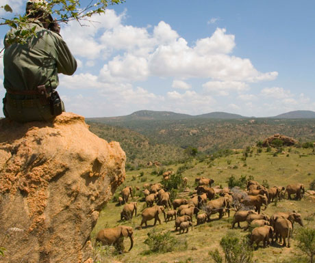 Luxury safari in kenya 3