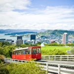5 of the best family friendly activities in Wellington, New Zealand