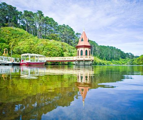 Zealandia - The Karori Sanctuary Experience