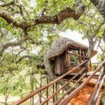 5 enchanting treehouses in South Africa