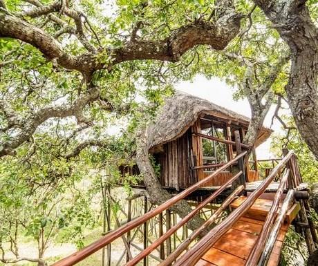 Pezulu Lodge