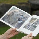 Transforming your luxury travel memories into a stylish photo book