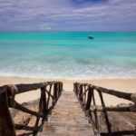 Photograph of the week: Tropical bliss in Zanzibar