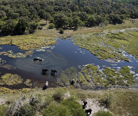 Fly-in safaris over Botswana