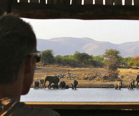 Manyara Ranch hide