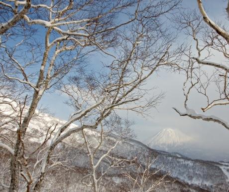 Niseko Moiwa view of Mount Yotei