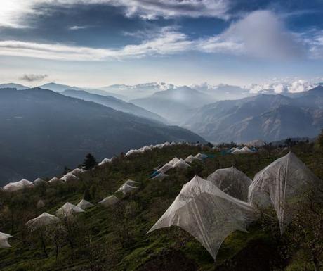 Seetalvan orchards, Himachal