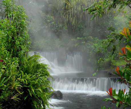 Tabacon Grand Spa, Arenal