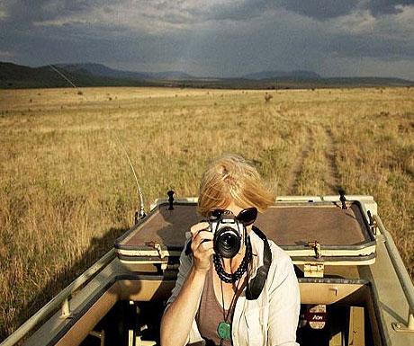 serengeti-safari-camp-looking-for-cats
