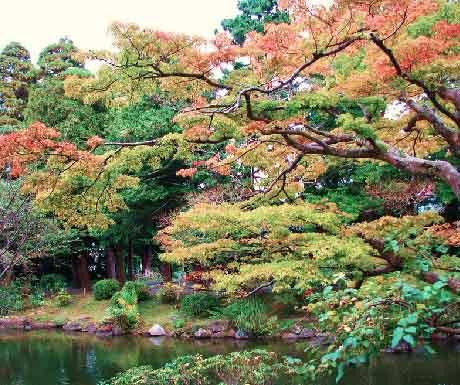 5. 12.00 Naritasan Park