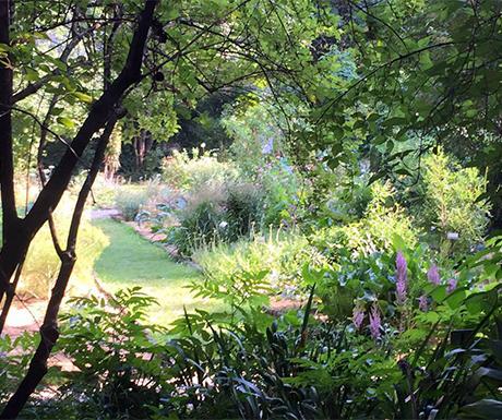 Inside the Orto Botanico di Brera