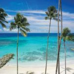 Top reasons to stay at Saint Peter's Bay Luxury Resort and Residences in Barbados