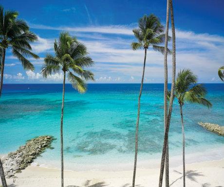 Saint Peters Bay Luxury Resort and Residences 1