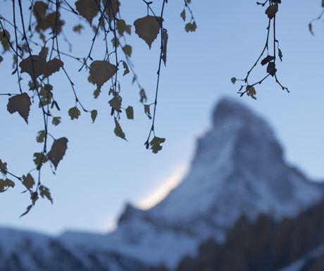 Zermatt dusk