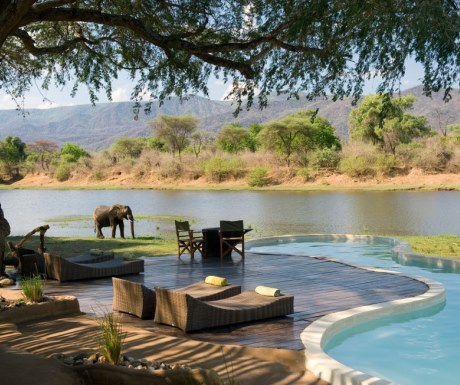 Elephants by the pool at Chongwe River House Lower Zambezi