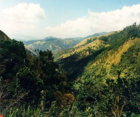 JTB Blue Mountain Jamaica