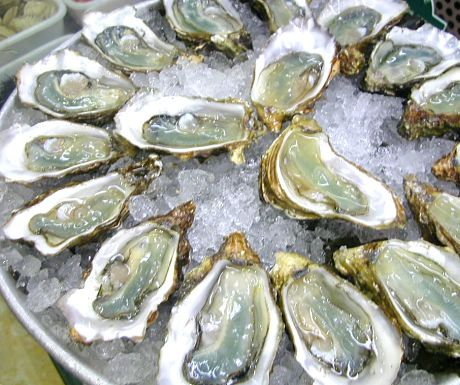 Oysters photo