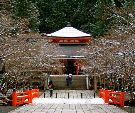 Stay at a traditional temple lodgings and meditate under the guidance of a head priest in Mount Koya