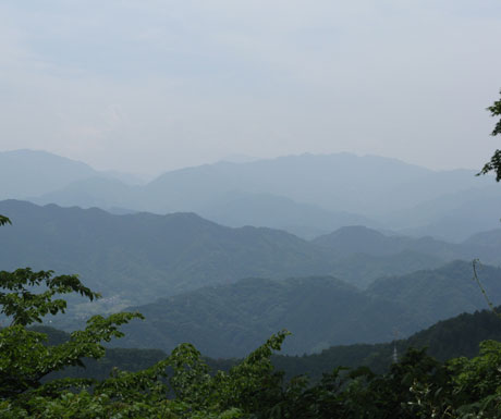 Stunning views from Mount Takao