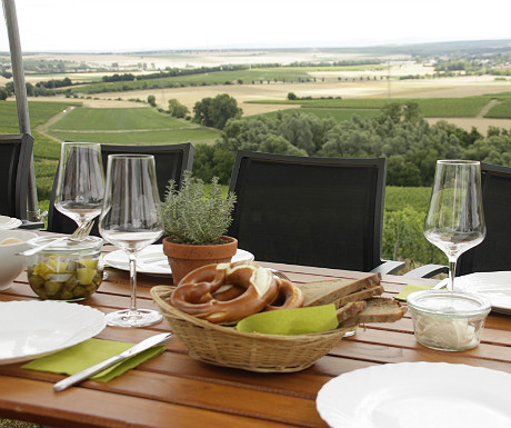 Table set for vineyard lunch