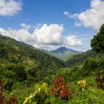 Jamaica's top 5 natural highlights